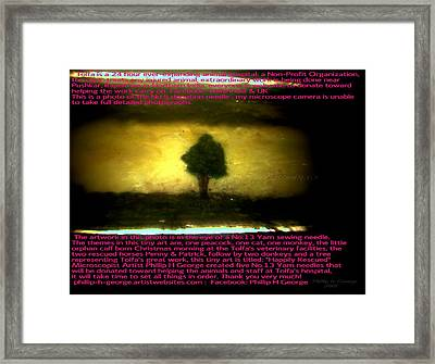 The Tree Of Hope Framed Print by Phillip H George