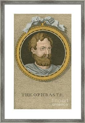 Theophrastus, Ancient Greek Polymath Framed Print by Science Source
