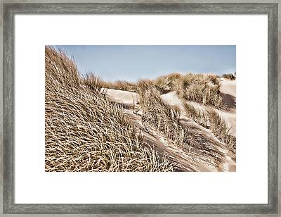 Tranquility Framed Print by Bonnie Bruno