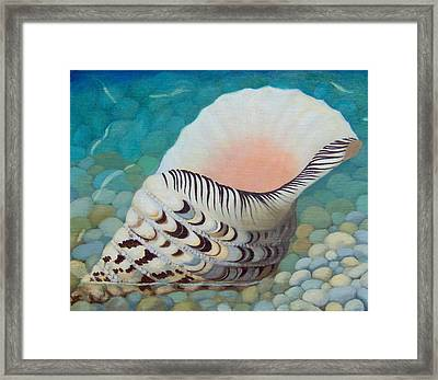 Triton's Trumpet Framed Print by Mirjana Jankovic