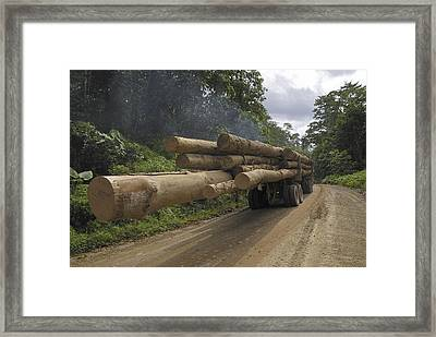 Truck With Timber From A Logging Area Framed Print by Thomas Marent