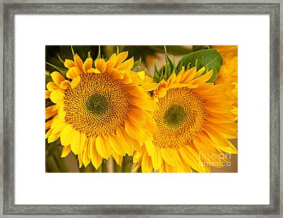 Twins Framed Print by Bob and Nancy Kendrick