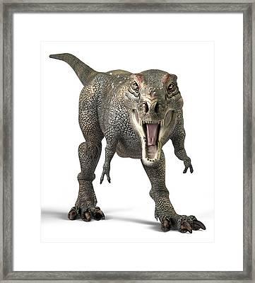 Tyrannosaurus Rex Dinosaur Framed Print by Roger Harris