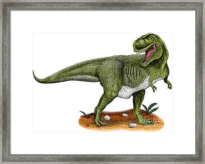 Tyrannosaurus Rex Framed Print by Roger Hall and Photo Researchers