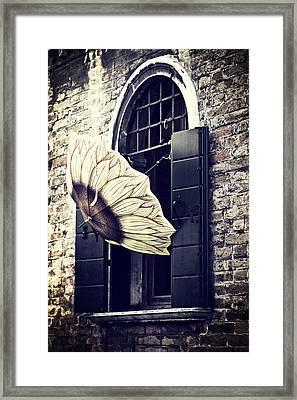 Umbrella Framed Print by Joana Kruse