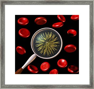 Virus And Red Blood Cells Framed Print by Friedrich Saurer