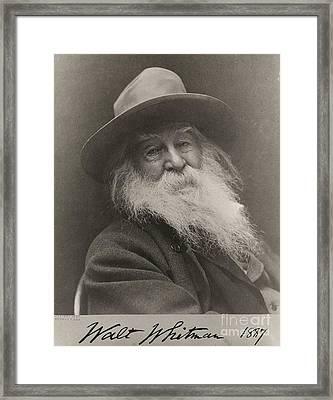 Walt Whitman Framed Print by Photo Researchers