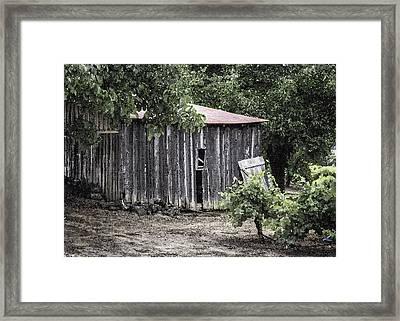 Watercolor Barn Framed Print by Joan Carroll