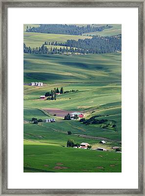 Wheatfields In Rural Washington State Framed Print by Carl Purcell