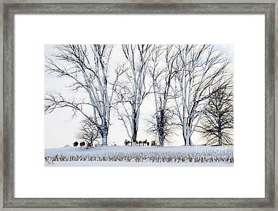 Winter Calm Framed Print by Christine Belt