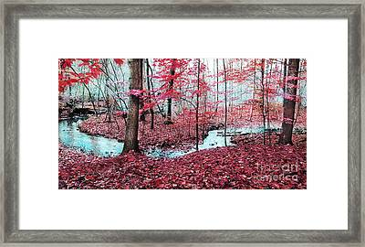Winter On Its Way Framed Print by Gina Signore