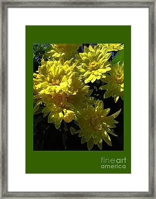 Yellow Flowers Framed Print by Dale   Ford