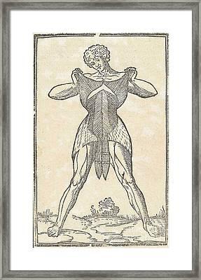 Historical Anatomical Illustration Framed Print by Science Source