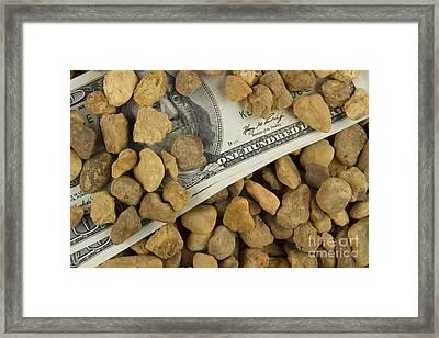 Money Framed Print by Blink Images