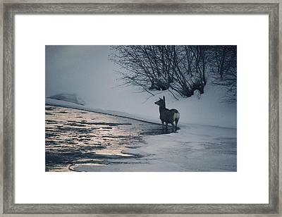 Untitled Framed Print by Dean Conger