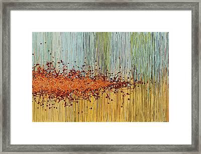Untitled Framed Print by Kate Tesch