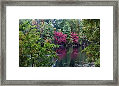 Sugar Ridge State Fish And Wildlife Area Framed Print by Jack R Brock