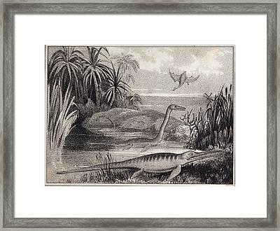1837 Extinct Prehistoric Animals Dorset Framed Print by Paul D Stewart