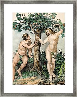 1863 Adam And Eve From Zoology Textbook Framed Print by Paul D Stewart