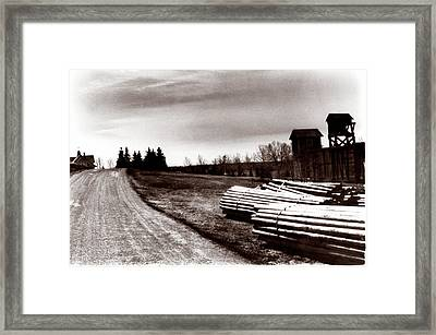 1900 Untitled Framed Print by Marcin and Dawid Witukiewicz