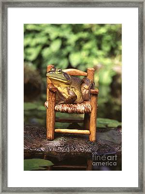 Bullfrog Framed Print by Kenneth H Thomas and Photo Researchers