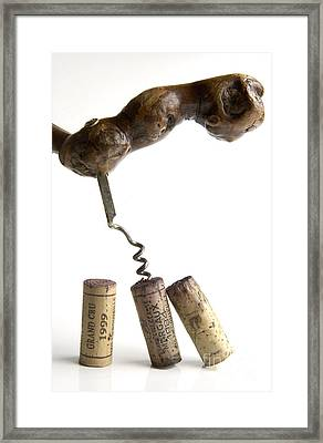 Corks Of French Wine. Framed Print by Bernard Jaubert