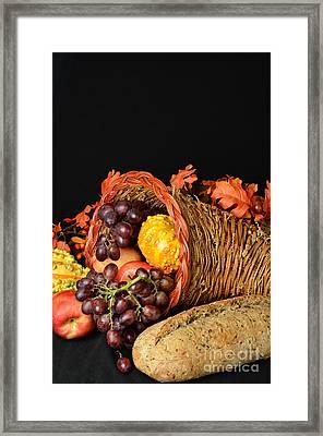 Cornucopia  Framed Print by Timothy OLeary
