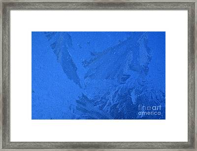 Frost On A Windowpane Framed Print by Thomas R Fletcher