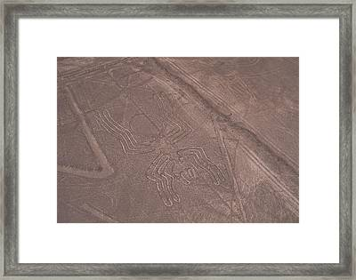 Nazca Lines Framed Print by David Nunuk