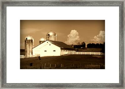 Cattle Farm Mornings Framed Print by Karen Wiles