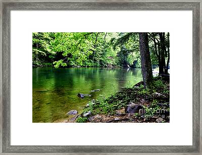 Spring Along Cranberry River Framed Print by Thomas R Fletcher