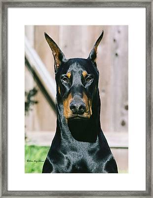 Voodoo Framed Print by Rita Kay Adams