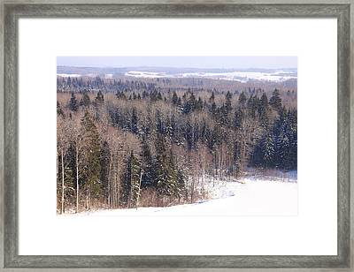 Winter Forest In Latgale Framed Print by Igors Parhomciks