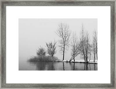 Wintertrees Framed Print by Joana Kruse
