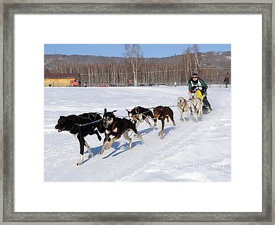 2010 Limited North American Sled Dog Race Framed Print by Gary Whitton