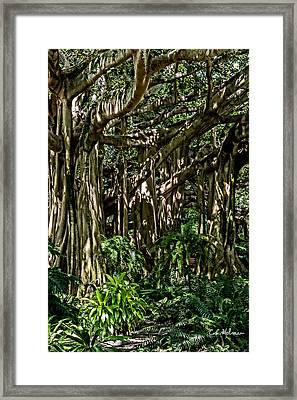 20120915-dsc09877 Framed Print by Christopher Holmes