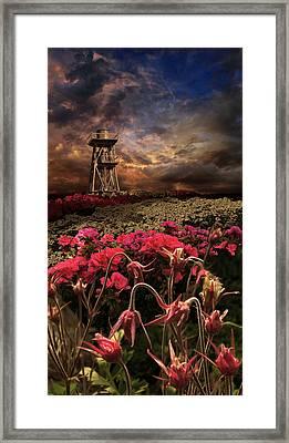 2258 Framed Print by Peter Holme III