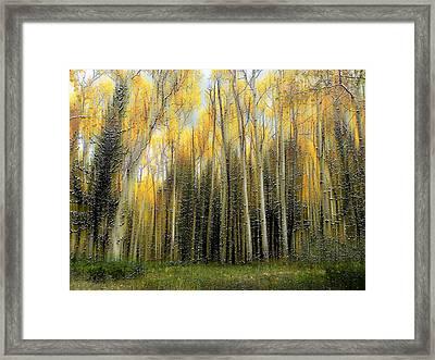 2399 Framed Print by Peter Holme III