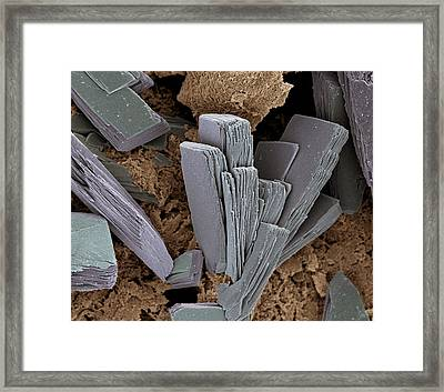 Blood Clot Crystals, Sem Framed Print by Steve Gschmeissner