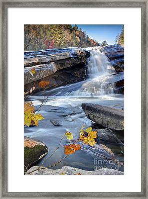 Bridal Veil Falls In Dupont State Park Nc Framed Print by Dustin K Ryan