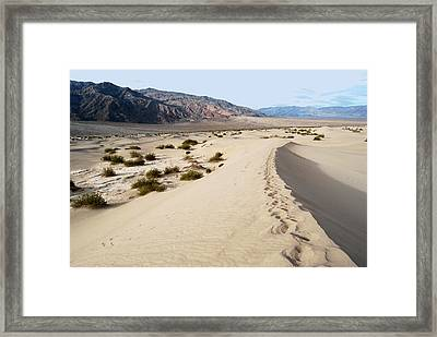 Death Valley National Park Mesquite Flat Sand Dunes Framed Print by Eva Kaufman