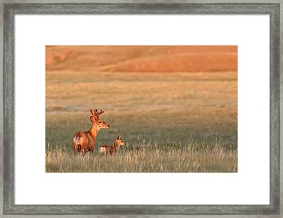 Digitally Enhanced Image With Painterly Framed Print by Robert Postma