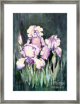 Iris Framed Print by Diana  Tyson
