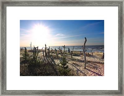 the Baltic Sea Framed Print by Igors Parhomciks