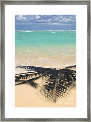 Tropical Beach Framed Print by Elena Elisseeva