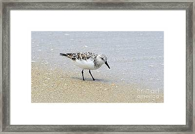 Ocean Tides Series Framed Print by Terry Troupe