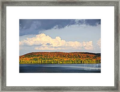 Fall Forest And Lake Framed Print by Elena Elisseeva