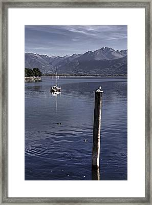 Sailing Boat Framed Print by Joana Kruse