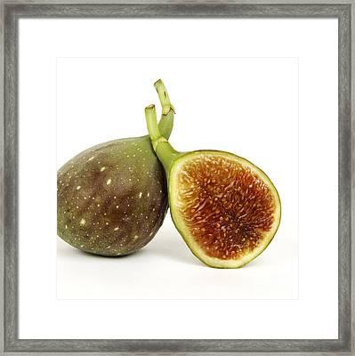 Figs Framed Print by Bernard Jaubert