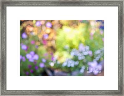 Flower Garden In Sunshine Framed Print by Elena Elisseeva